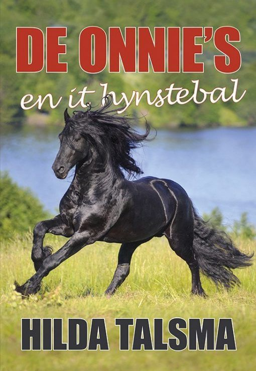 De Onnie`s en it hynstebal
